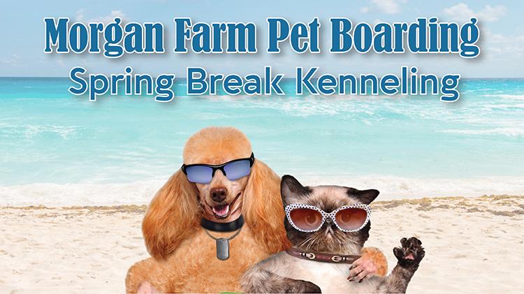 Morgan Farm Pet Boarding Spring Break Kenneling