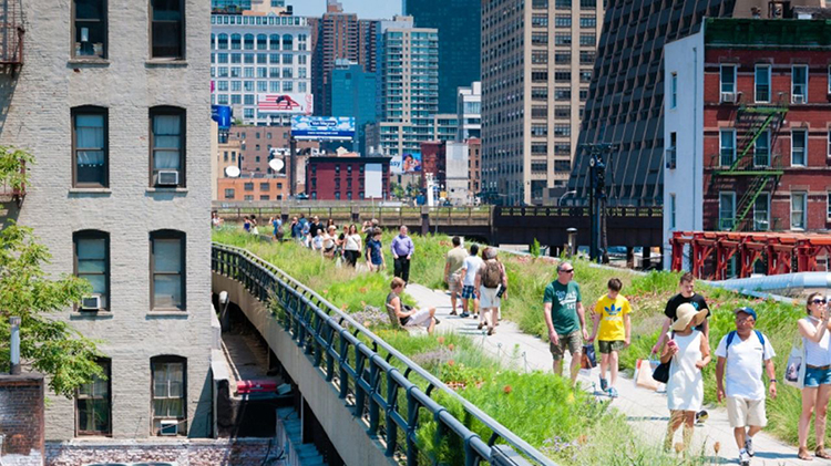 Walk the Highline in NYC