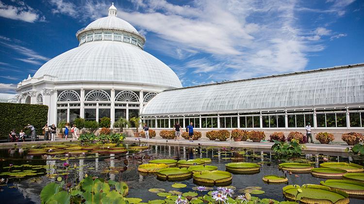 NY Botanical Garden or Bronx Zoo