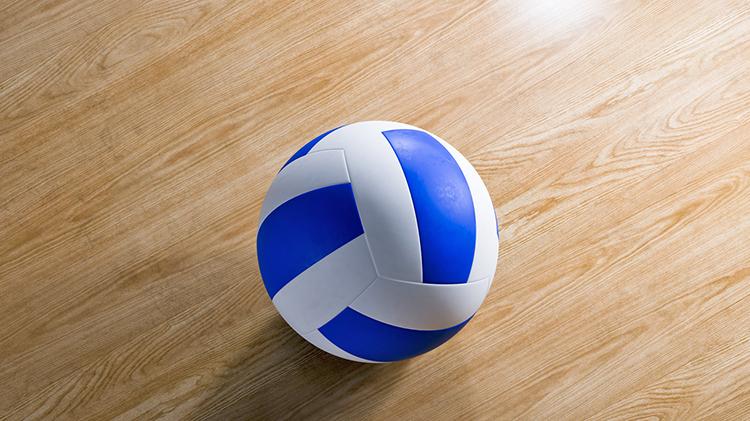 Summer Intramural Volleyball Program