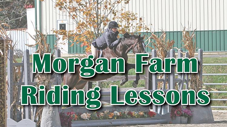 Morgan Farm Riding Lessons