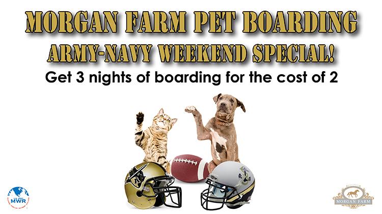 Morgan Farm Army Navy Weekend Special