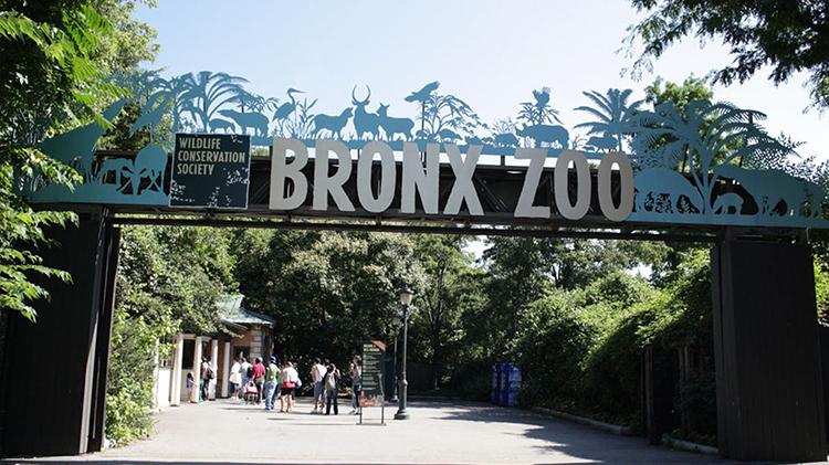 New York Botanical Garden or Bronx Zoo